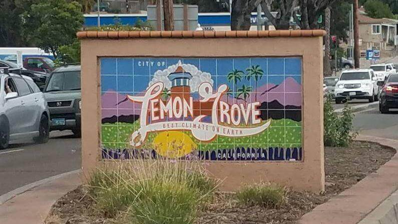 lemon grove flood services