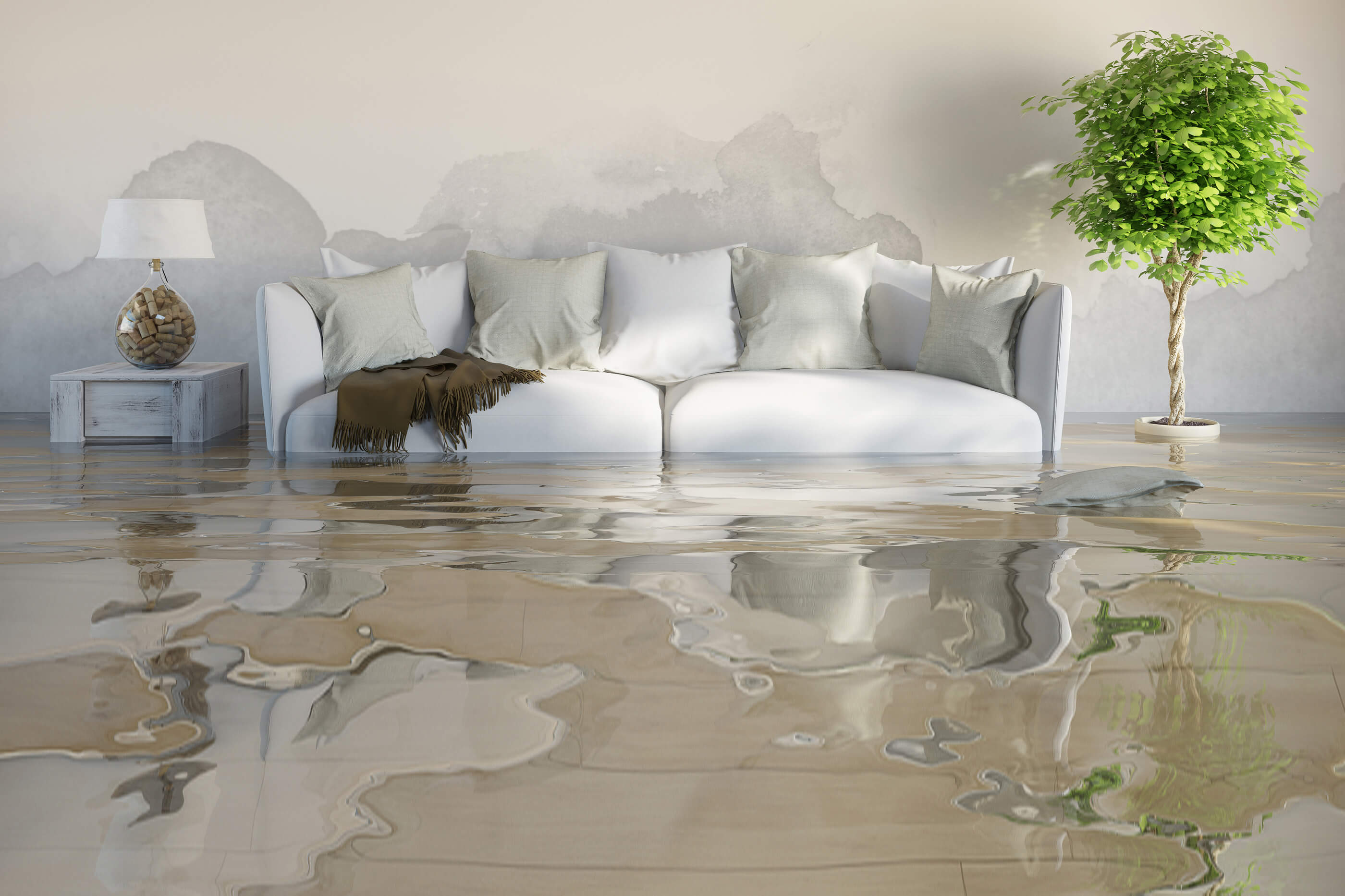 Mira Mesa Flood Service